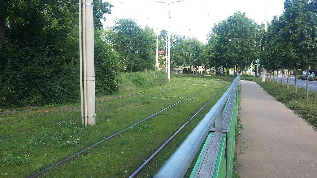 Przybędzie zielonych torowisk w Warszawie. Co z pozostałymi miastami?